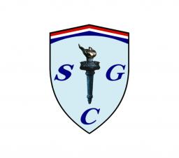 logo for online